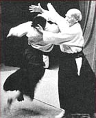 aikido and wu-wei picture